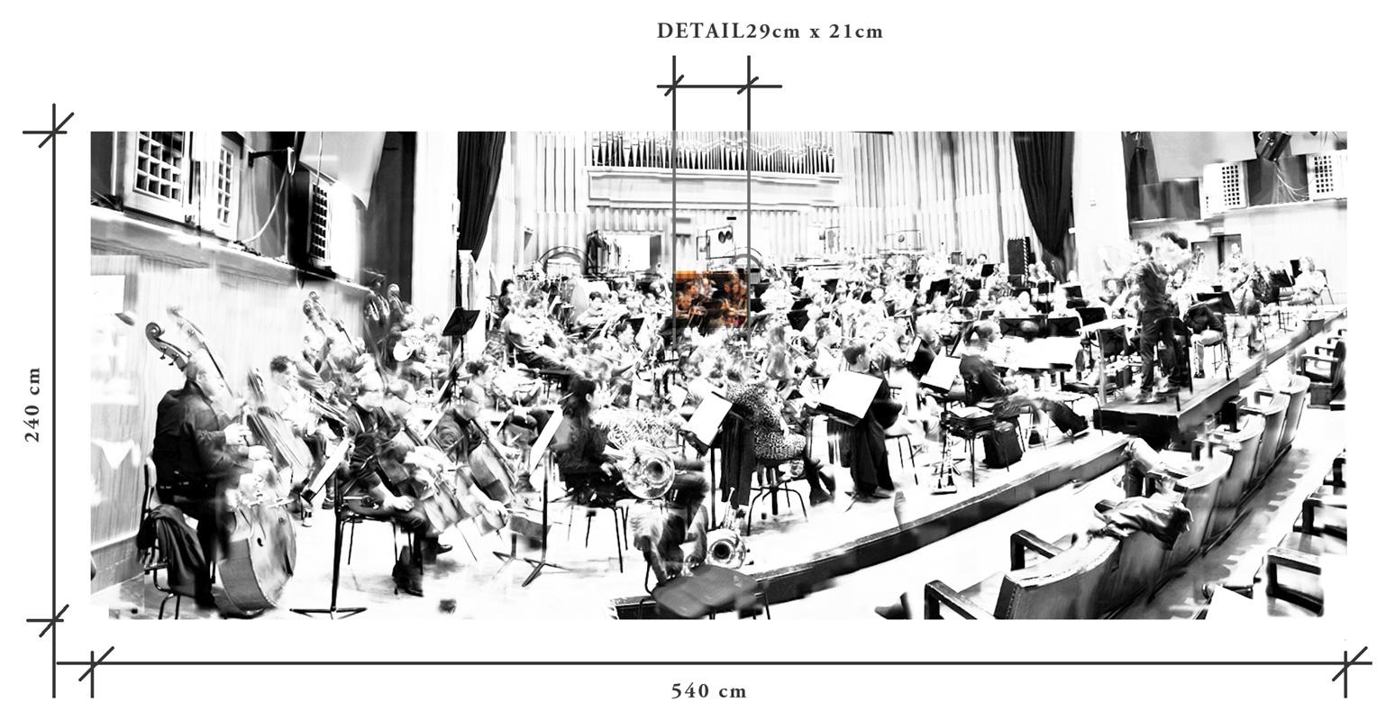Radio Symphonieorchester Wien - Detailübersicht